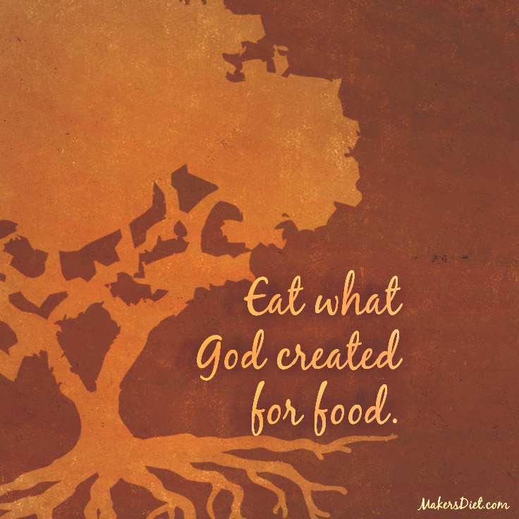 Eat What God Created For Food.